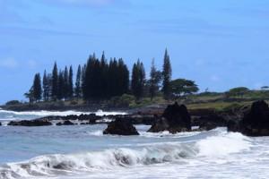 Beautiful Hana coast