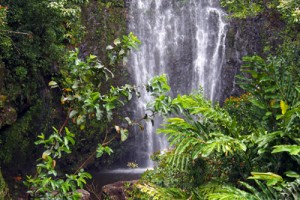 One more beautiful waterfall