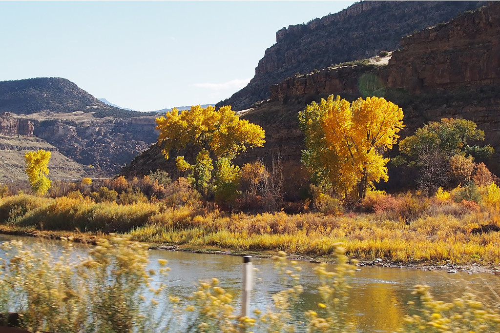 Fall color along the Colorado River